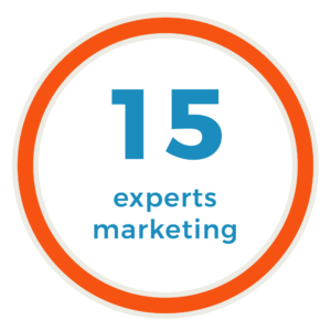 15 experts marketing